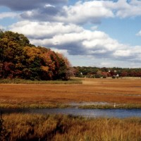 History of the East Sandwich Game Farm