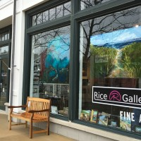 Celebration of New Art and Artists at Rice Gallery