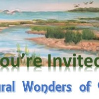 Mosaic Unveiling of NATURAL WONDERS of Cape Cod