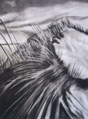 primary-Exploring-Charcoal-and-Pastel-with-Michael-Gillane-1482339627