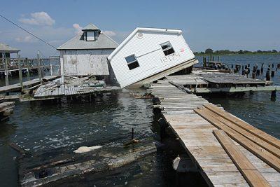 primary-Sea-Change--Saving-Jamaica-Bay-1482336689