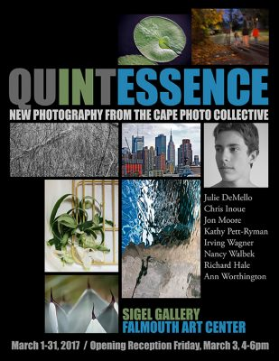 primary-Quintessence---New-Photography-From-The-Cape-Photo-Collective-1486517874