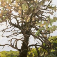 primary-Painting-Summer-Light-with-Nancy-McCarthy-1489426130