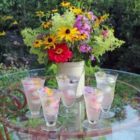 primary-The-Cocktail-Hour-Garden-with-C--L--Fornari-1489425015