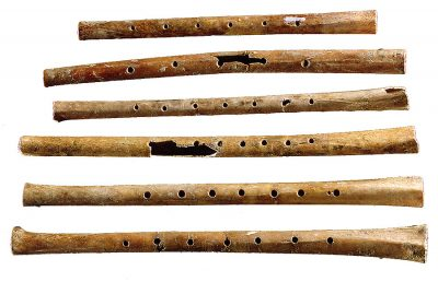 Musical Origins and the Stone Age Evolution of Flu...