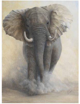 Naturescape Gallery presents Artist Jean Hynes