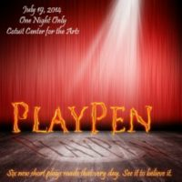 Playpen: a 24-Hour Theater Experiment