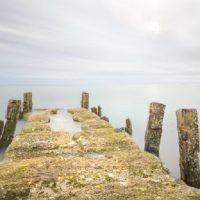 Cape Cod Winterscapes w/ John Tunney