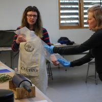 Projects in Printmaking II with Vicky Tomayko