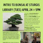 Intro to Bonsai at Sturgis Library
