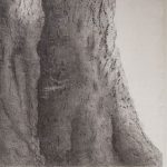 Thin Places: Drawings and Photographs by Deborah Coolidge