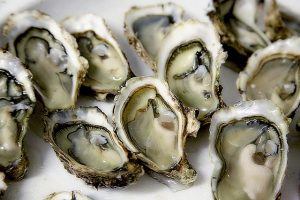 Oysters and Oyster Plates