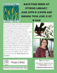 Backyard Birds and Birding Tour at Sturgis Library...