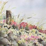 NEW! Discover Watercolor w/ Susan Stranz
