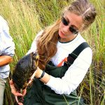 Turtles Are in Trouble with Dr. Jackie Litzgus