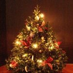 Holiday Tabletop Boxwood Tree with Anna Holmes