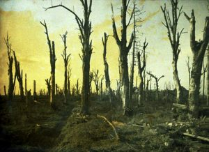 Battle Lines: Poetry and Music of World War I