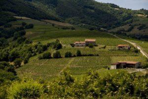 Food & Wines of Beaujolais