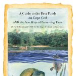 "Artist Talk: ""How to Explore a Pond"" by Susan Baur"