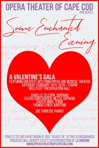 Valentine's Celebration Gala to Benefit Opera Theater of Cape Cod