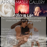 """""""A Slice of Life: The Professional Photographers of Cape Cod Showcase Their Art of Photography"""""""