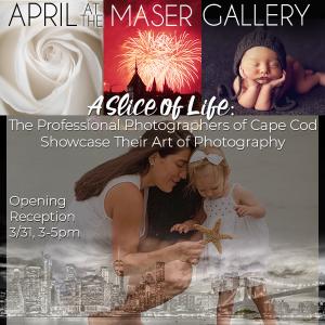 """A Slice of Life: The Professional Photographers o..."