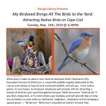 My Birdseed Brings All The Birds to the Yard: Attracting Native Birds on Cape Cod