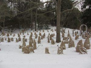 Hydrangea Success Series: Winterizing Workshop