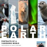 """Polar Earth: Portraits of a Vanishing World"" Photographs by John and Pam King"