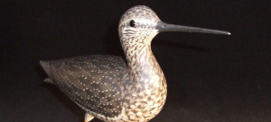 Behind-the-Scenes Collection Tour: Focus on Bird C...