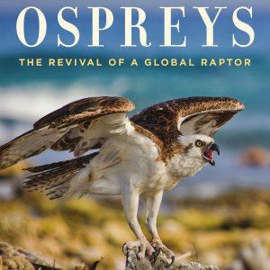 Ospreys 2019: The Revival of a Global Raptor