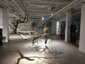 Opening Reception for Installation Artists Sal Fiumara & Tetsunori Kawana
