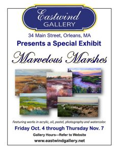 Special Exhibit - Marvelous Marshes
