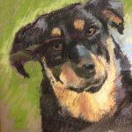 Pet Portraits with Ruth Odile Davis