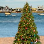 Holiday on the Cape