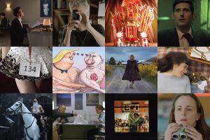 Film Falmouth: Winter Shorts