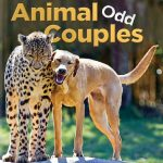 "Nature Screen presents ""Animal Odd Couples"""