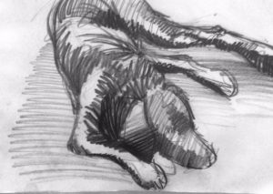 Online or In person: Introduction to Drawing with Craig Caldwell