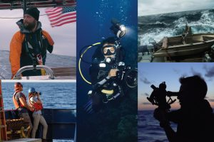 WHFF Virtual: Sea Shorts