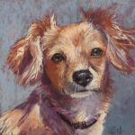 ONLINE: Pastel Painting – Pet Portraits, with Betsy Payne Cook