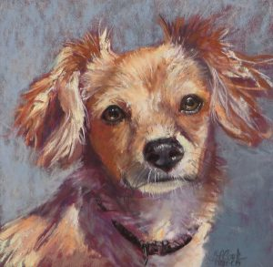 Pastel Painting: Pet Portraits with Betsy Payne Cook (Online)
