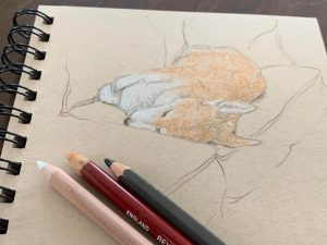 Sketching for Scaredy Cats 3, Spring 2021