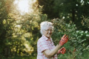 ONLINE OR IN-PERSON: Boomer Gardens — Gardens for an Aging Generation with Priscilla Husband