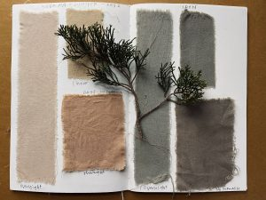 Exploring Natural Dyes and Pigments