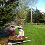 ONLINE OR IN-PERSON: Boomer Gardens — Gardens fo...