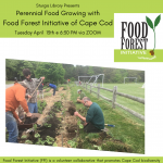 Perennial Food Growing with Food Forest Initiative of Cape Cod