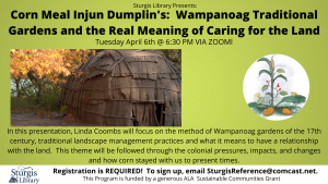 Corn Meal Injun Dumplin's: Wampanoag Traditional Gardens and the Real Meaning...