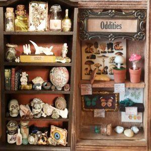 Curiosity Box Dioramas, with Nate Olin