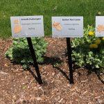 Native Plant Marker Unveiling & Garden Celebration