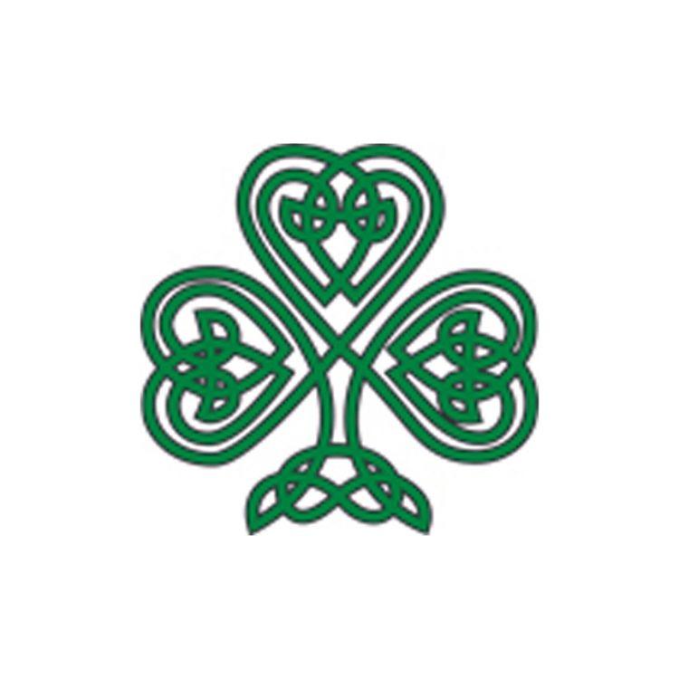 20th Century Male Irish Authors & The Women Th...